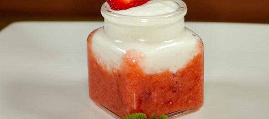 24h SCD Yogurt