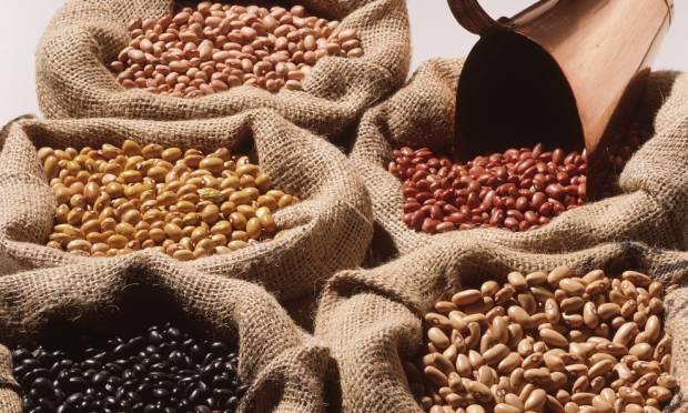 Beans – Part 1